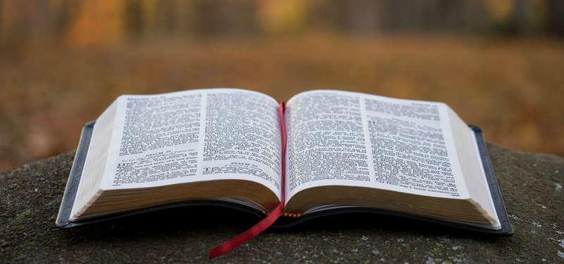 Библия за год №3 чтение три раза за год